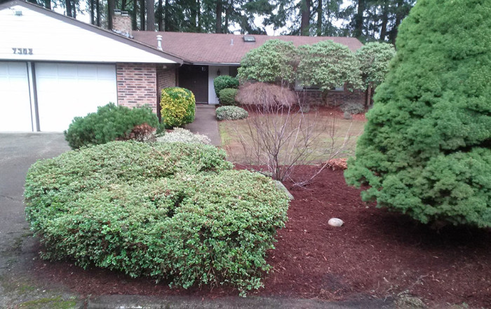 seattle real estate landscape maintenance