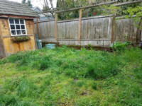 Seattle landscaping services - before