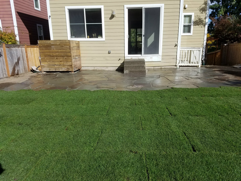 Seattle landscaping sod