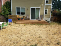 seattle landscaping lawn replacement