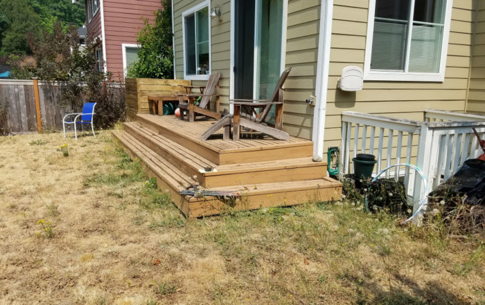 seattle landscaping yard rehab