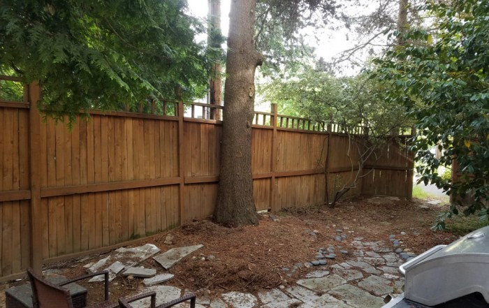 Seattle landscape repair